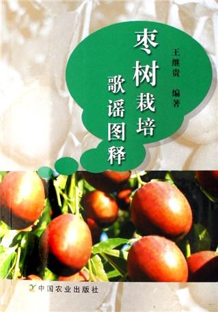 两棵枣树主要内容