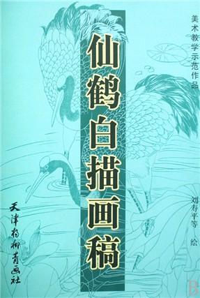仙鹤白描画稿(美术教学示范作品)
