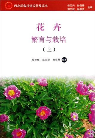 橡皮章素材百合花