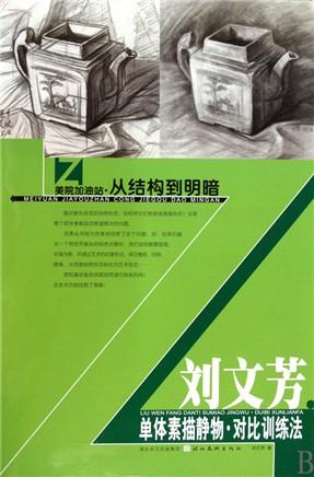 刘文芳单体素描静物对比训练法/美院加油站从结构到明暗