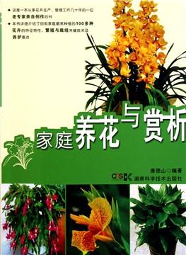 葫芦丝牵手观音曲谱-广东万年青与千手观音是同一种花卉吗