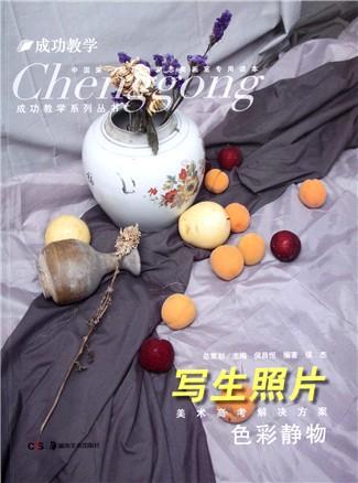 写生照片(色彩静物)/成功教学系列丛书