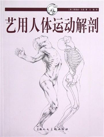 艺用人体运动解剖/西方经典美术技法译丛图片
