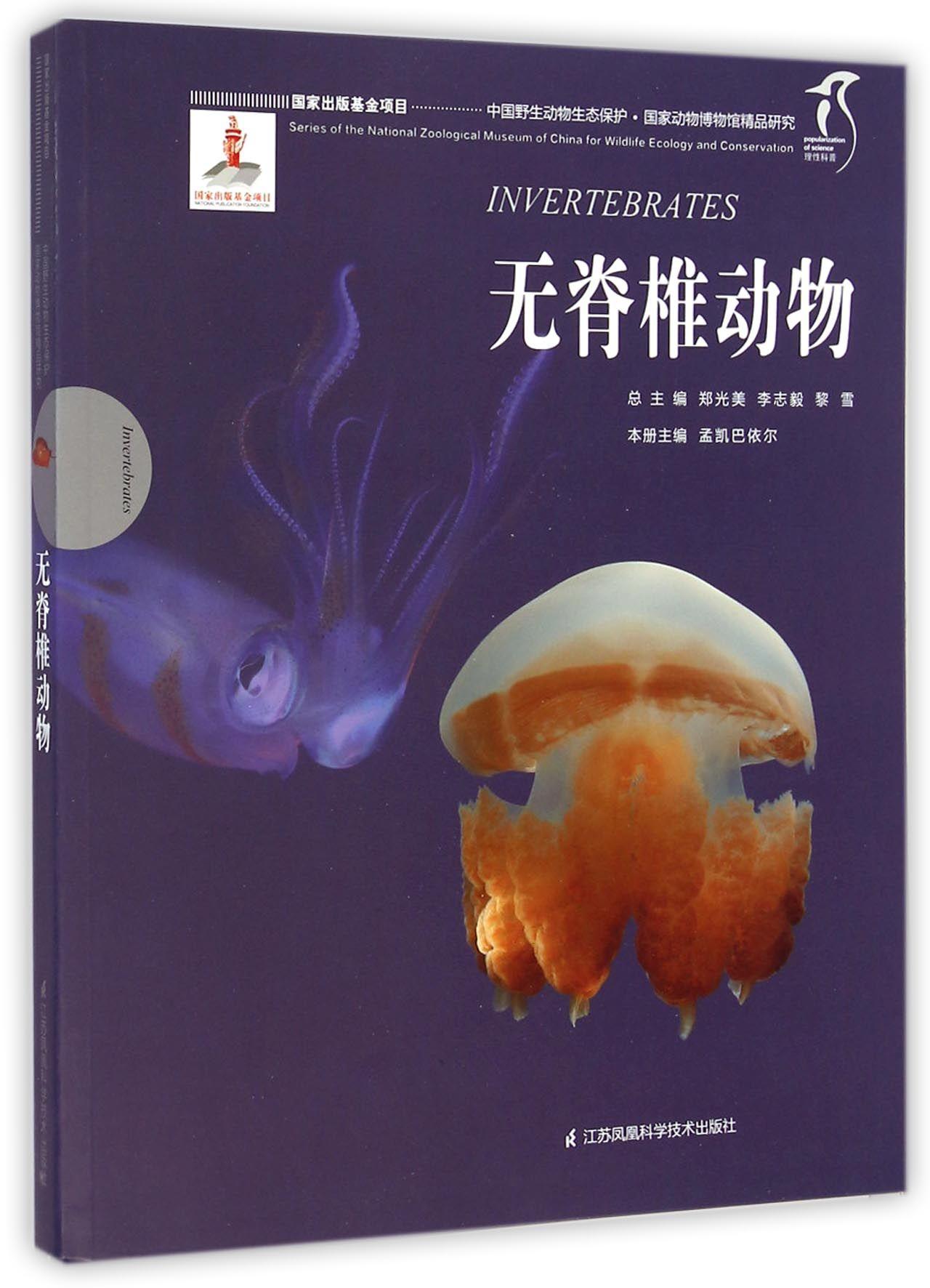无脊椎动物/中国野生动物生态保